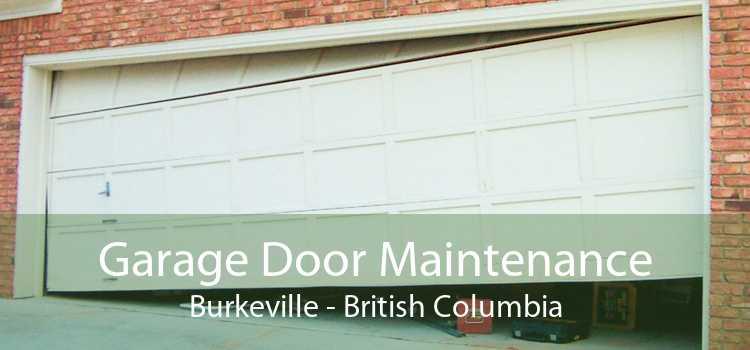 Garage Door Maintenance Burkeville - British Columbia