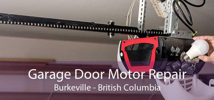 Garage Door Motor Repair Burkeville - British Columbia