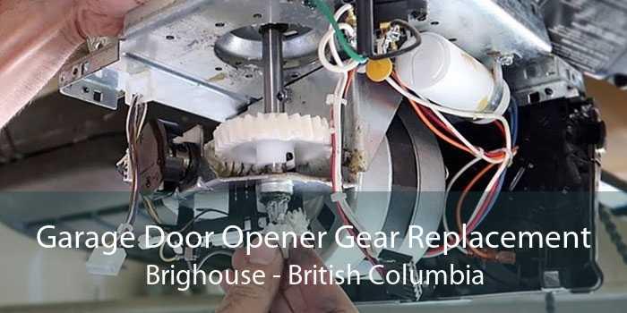 Garage Door Opener Gear Replacement Brighouse - British Columbia