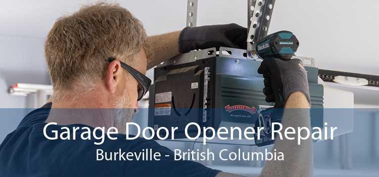 Garage Door Opener Repair Burkeville - British Columbia