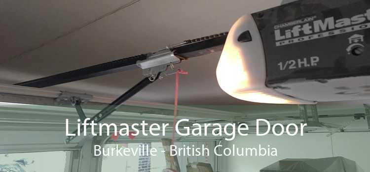 Liftmaster Garage Door Burkeville - British Columbia